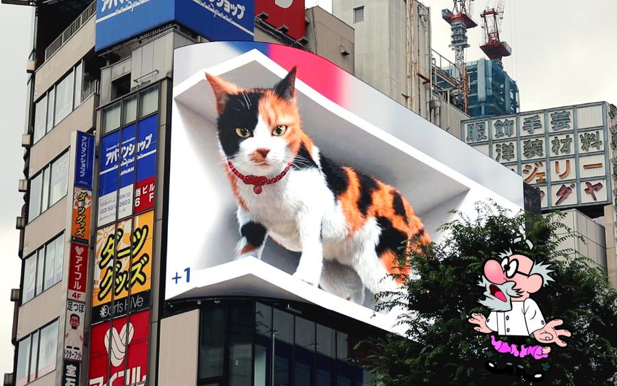 Megakat in tokio